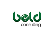 bold consulting